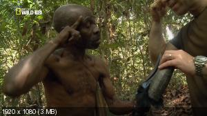 National Geographic: � ������� ����� ��������� / National Geographic: Man Hunt (2011) HDTV 1080i + HDTVRip