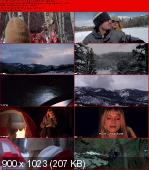 The Frozen (2012) PLSUBBED.DVDRip.XviD-BiDA / Napisy PL Wtopione