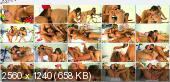 WeLiveTogether - Celeste Star, Sammie Rhodes, Dani Daniels, Destiny Dixon - Bikes and broads [HD 1080p]