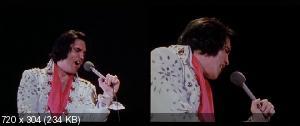 ����� �� ��������� / Elvis on Tour (1972) HDRip [Sub]