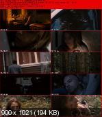 Zaginiona / Forsvunnen (2011) PL.DVDRip.XviD-BiDA / Lektor PL