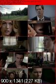 The Following [S01E02] HDTV XviD-AFG