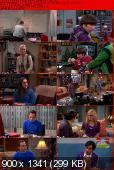 The Big Bang Theory [S06E14] HDTV.XviD-AFG