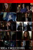 Castle 2009 [S05E13] HDTV.XviD-AFG