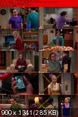 The Big Bang Theory [S06E15] HDTV.XviD-AFG