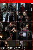 Once Upon a Time [S02E14] HDTV XviD-AFG