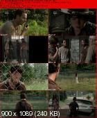 The Walking Dead [S03E12] HDTV.XviD-AFG