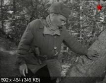 http://i52.fastpic.ru/thumb/2013/0305/37/f776bca5a9651a9e9b45ee962d4c6937.jpeg