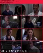 Greys Anatomy [S09E17] HDTV XviD-AFG