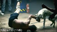 Азбука смерти / The ABCs of Death (2012) BDRip 720p   Лицензия