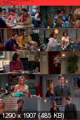 The Big Bang Theory [S06E20] HDTV XviD-AFG