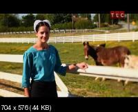 �����: ����� ����� ����� / Breaking Amish (2012) SATRip